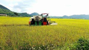 Cập nhật chi tiết chính sách hỗ trợ mua máy nông nghiệp 2020 mới nhất